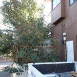 千葉県八街市 空き家整理